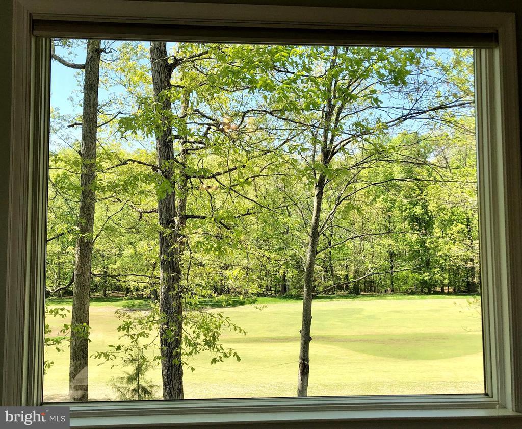 Views! View! Views! - 222 BIRDIE RD, LOCUST GROVE