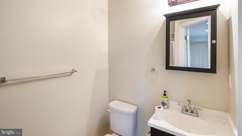 Rec Room Full Bath - 43533 LAIDLOW ST, CHANTILLY