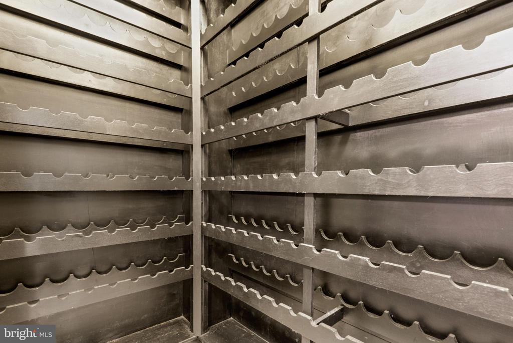 Wine closet on lower level - 2108 OWLS COVE LN, RESTON