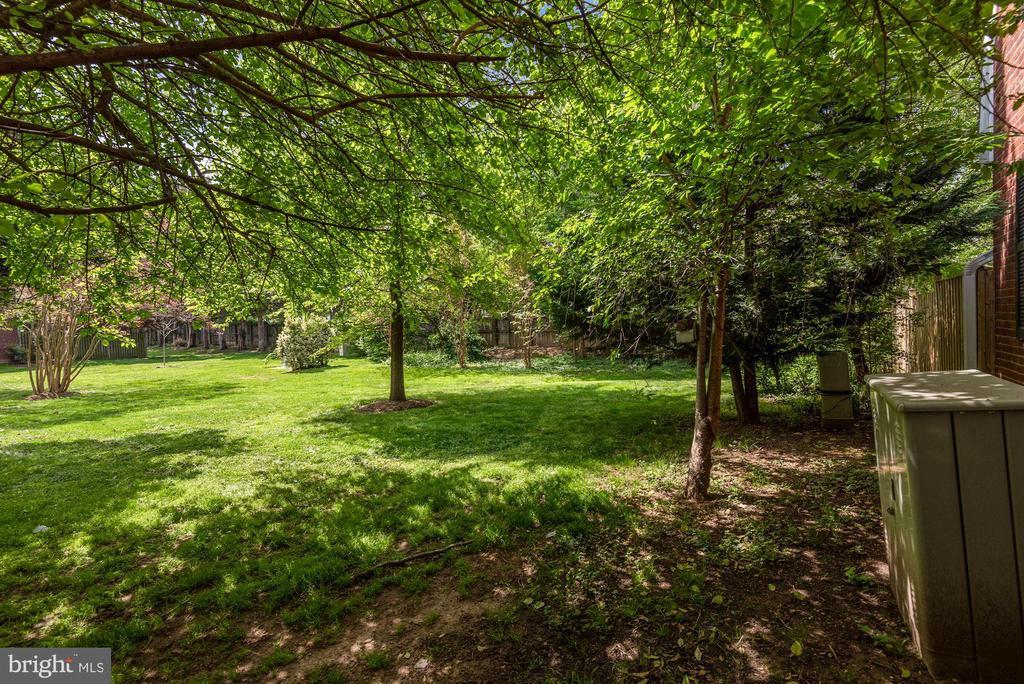 Side yard - 3613 S WAKEFIELD ST, ARLINGTON