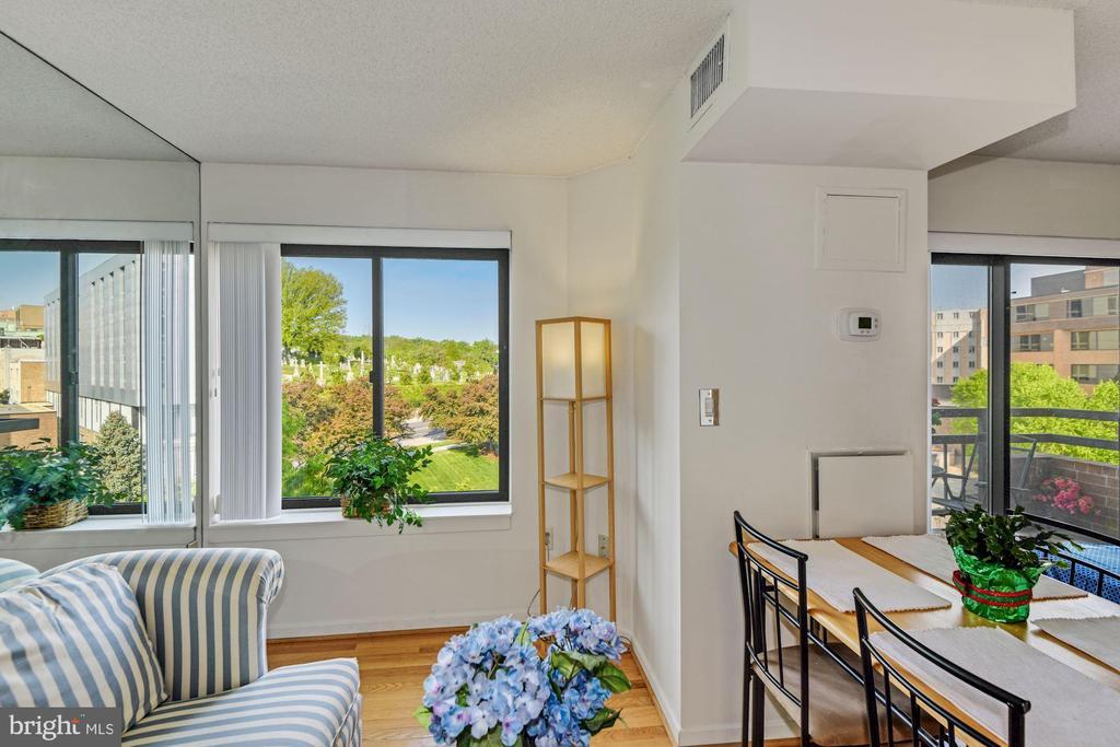 Large Windows Provide Plenty of Natural Sunlight - 2111 WISCONSIN AVE NW #524, WASHINGTON