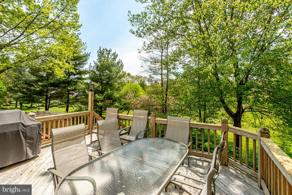 Large deck for entertaining - 19 GRISWOLD CT, POTOMAC FALLS