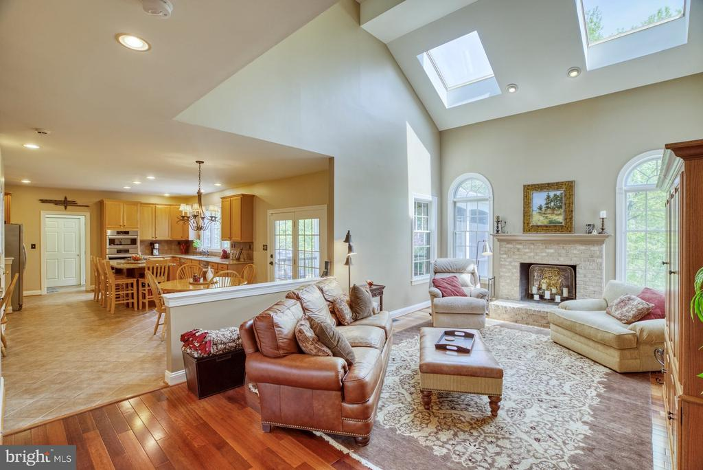 Family Room with Skylights  &Great Natural Light - 1269 COBBLE POND WAY, VIENNA