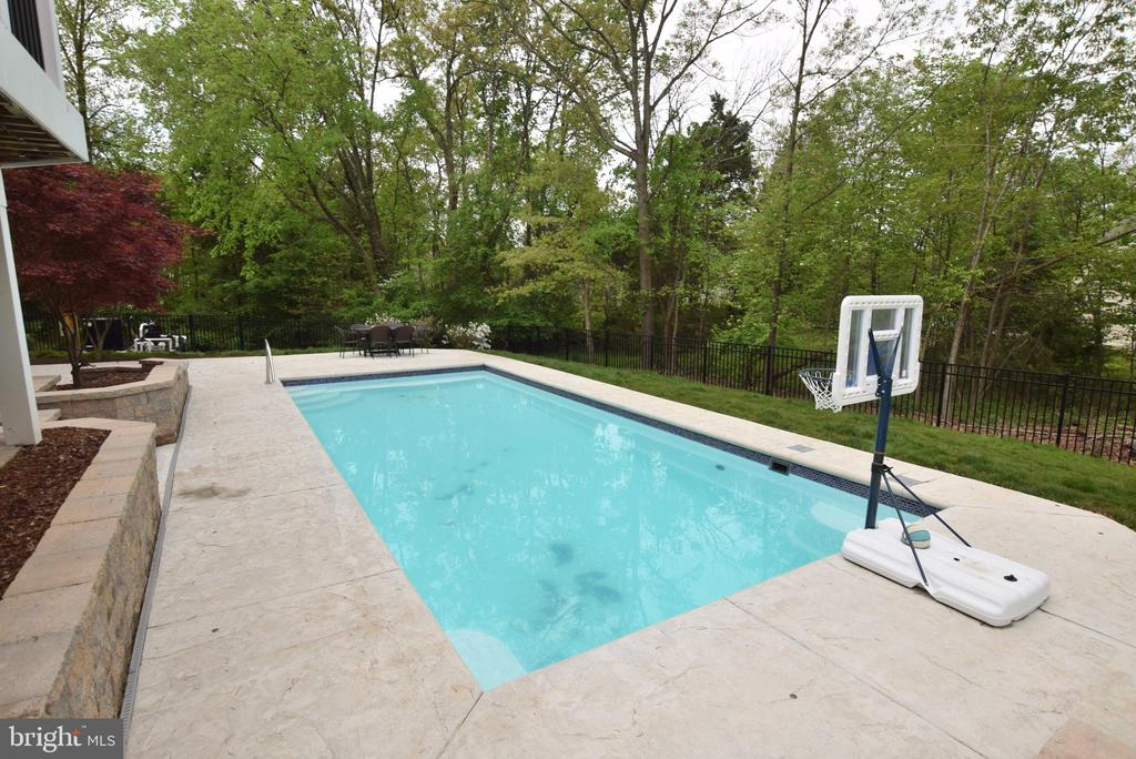 Custom Pool - 43341 CEDAR POND PL, CHANTILLY