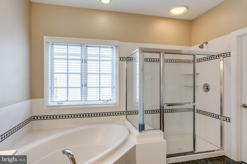 soaking tub and separate shower - 47788 SAULTY DR, STERLING