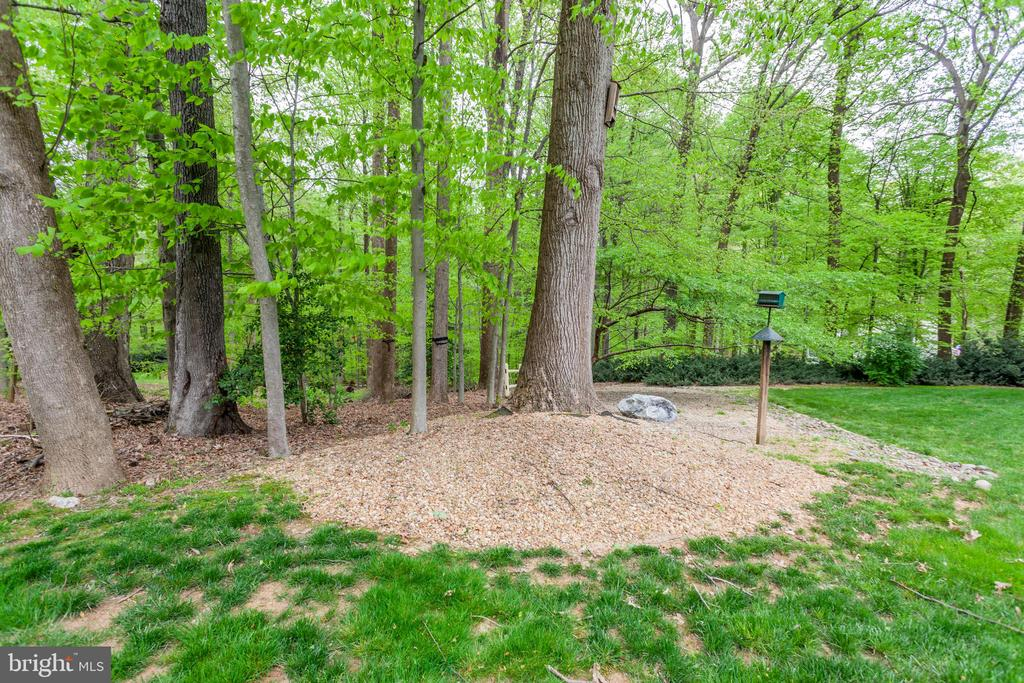Trees/Wooded Back Yard - 6305 BLACKBURN FORD DR, FAIRFAX STATION