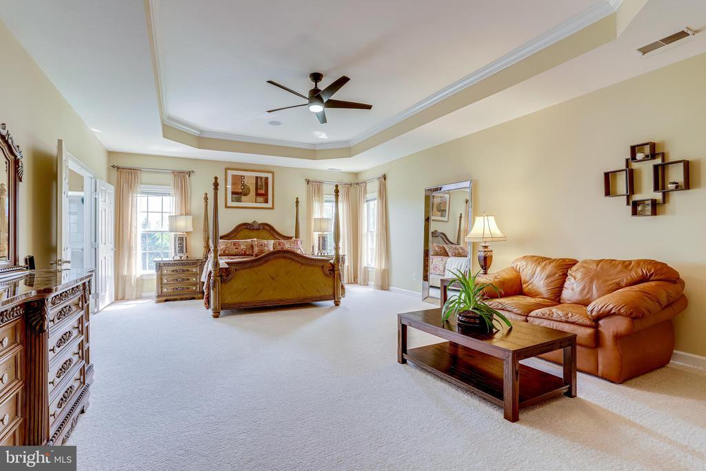 Master Bedroom! - 22339 DOLOMITE HILLS DR, ASHBURN