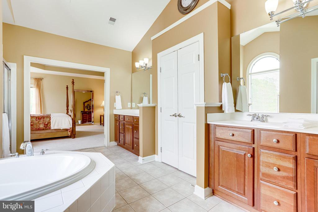 Master Bathroom! - 22339 DOLOMITE HILLS DR, ASHBURN
