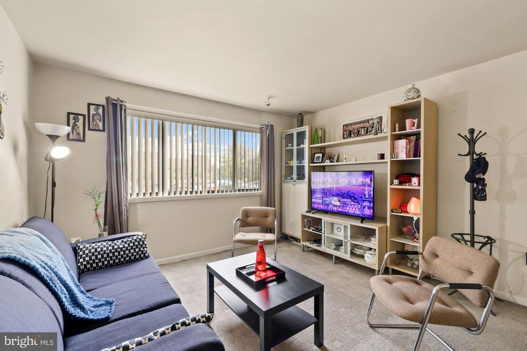 Bright and Sunny Living Room - 11507 AMHERST AVE #102, SILVER SPRING
