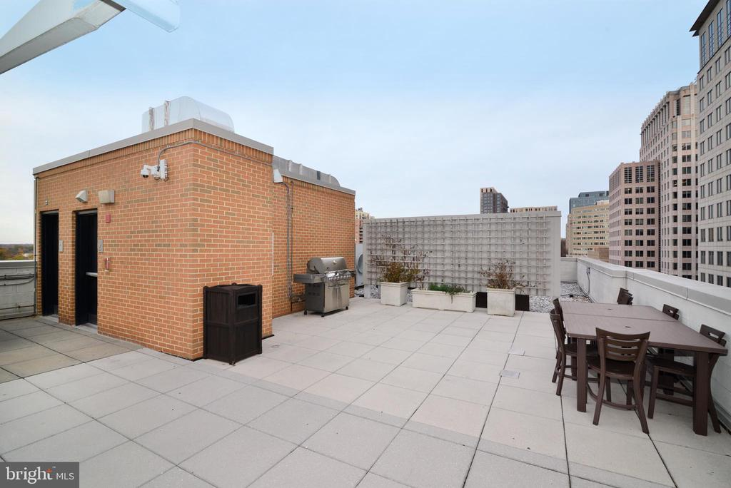 Roof top deck with barbeque - 12025 NEW DOMINION PKWY #311, RESTON