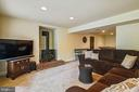 Huge rec room for friends and family to gather - 11949 GREY SQUIRREL LN, RESTON