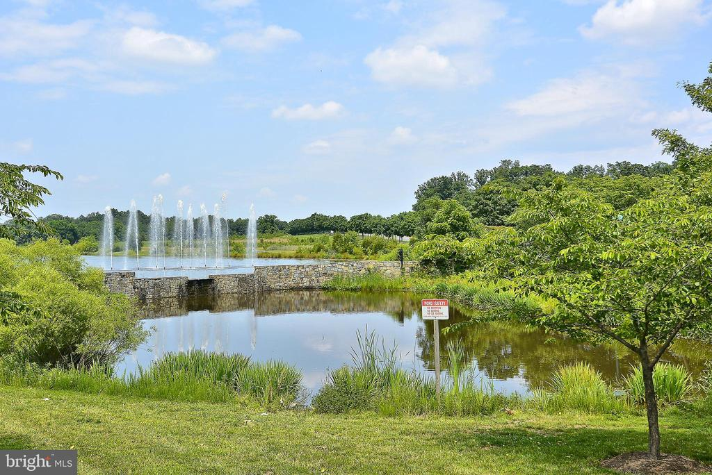 Fishing Ponds - 43690 MINK MEADOWS ST, CHANTILLY