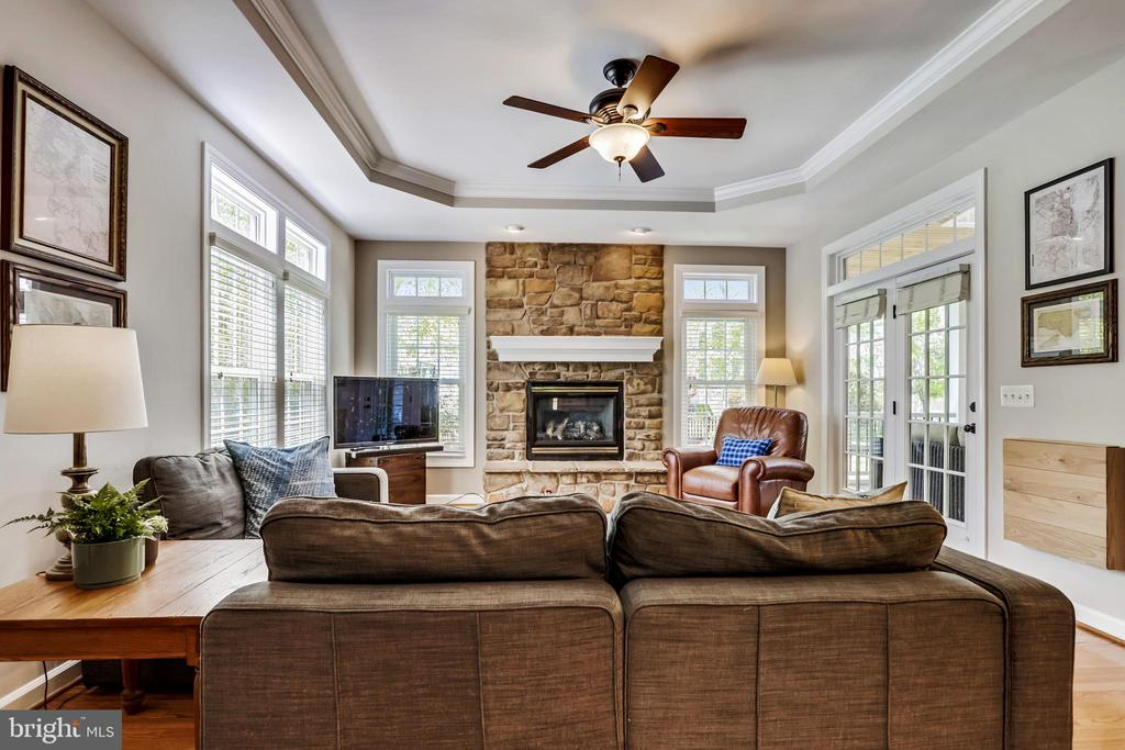 Inviting Family Room with Trey Ceiling - 43690 MINK MEADOWS ST, CHANTILLY