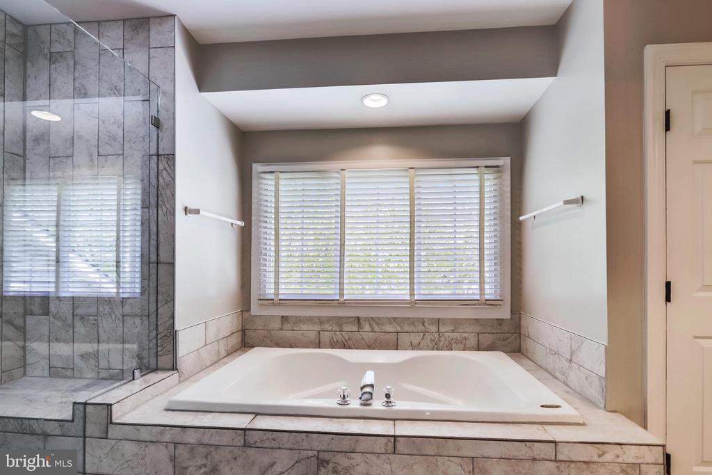 Soaking Tub, Frameless Glass Shower Doors - 43690 MINK MEADOWS ST, CHANTILLY