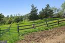 Fenced yard for horses - 39895 THOMAS MILL RD, LEESBURG