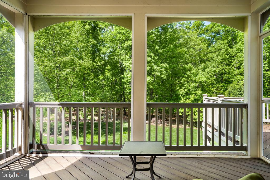 Screened porch off family room with stunning views - 43768 RIVERPOINT DR, LEESBURG
