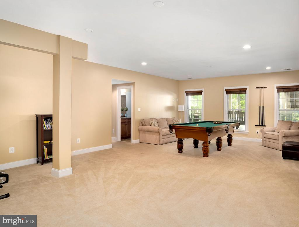 Spacious lower level for entertaining - 43768 RIVERPOINT DR, LEESBURG