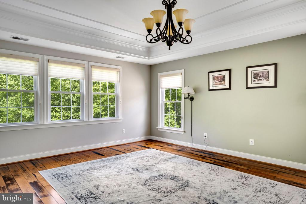 Main bedroom has tray ceiling and chandelier - 43768 RIVERPOINT DR, LEESBURG