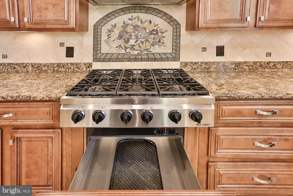 6 Burner Cooktop with Warmer Drawer - 7215 TANAGER ST, SPRINGFIELD