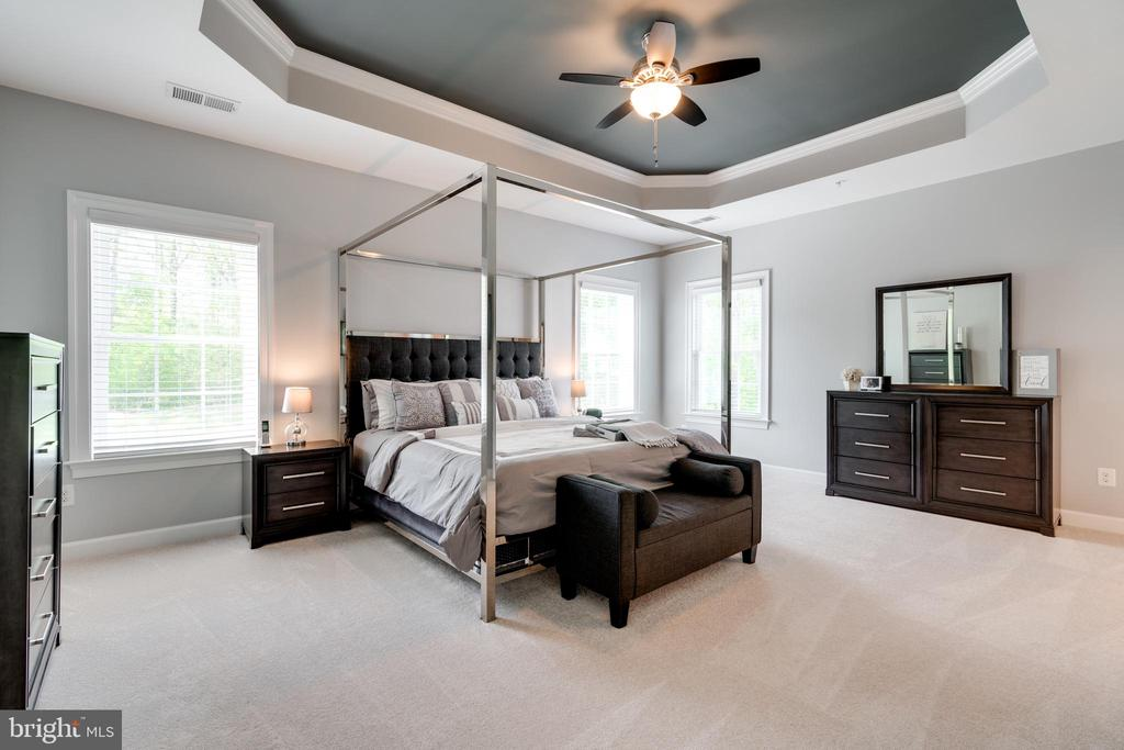 The tray-ceiling owner's suite... - 2094 TWIN SIX LN, DUMFRIES