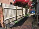 Nice perennials planted here. - 310 AMHERST ST, WINCHESTER