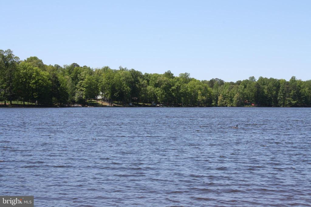 Lake fishing, swimming and boating are available - 301 BURR DR, RUTHER GLEN