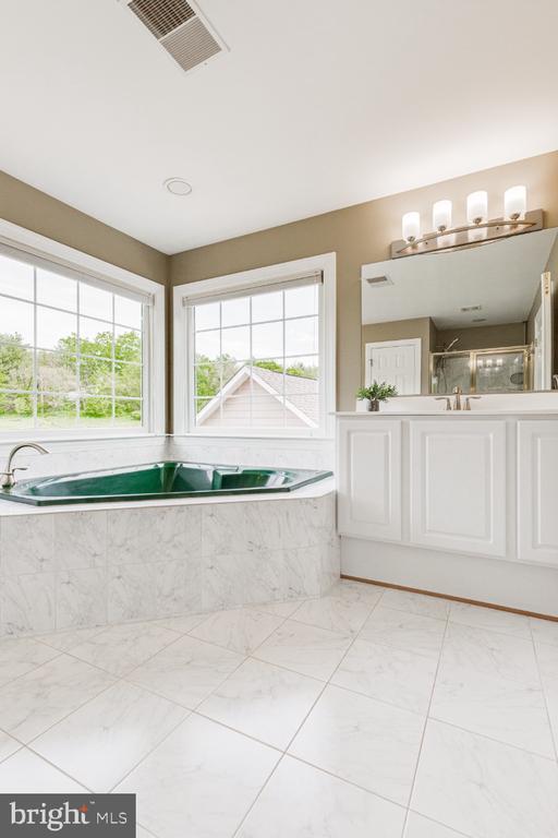 Master bathroom with spa soaking tub - 42308 GREEN MEADOW LN, LEESBURG