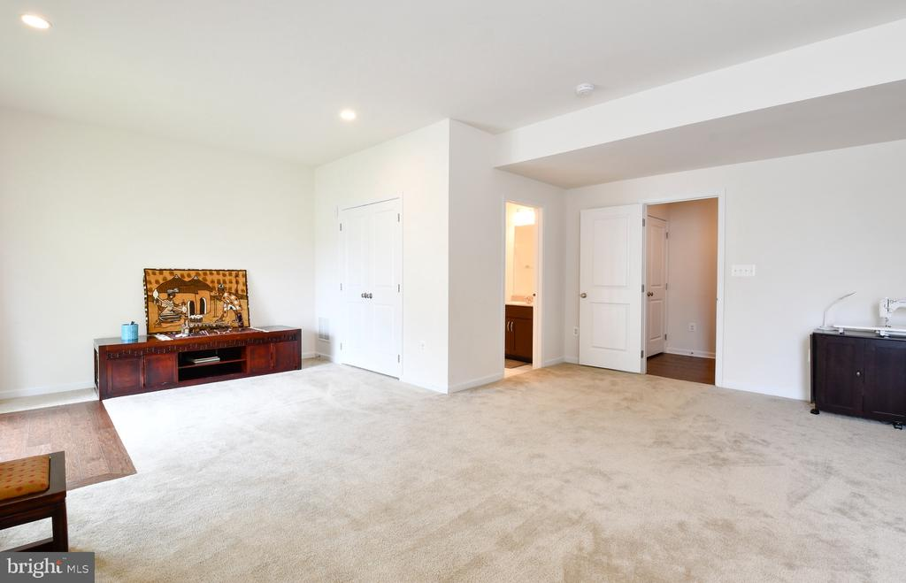Recreation room or fourth bedroom - 42615 LISBURN CHASE TER, CHANTILLY