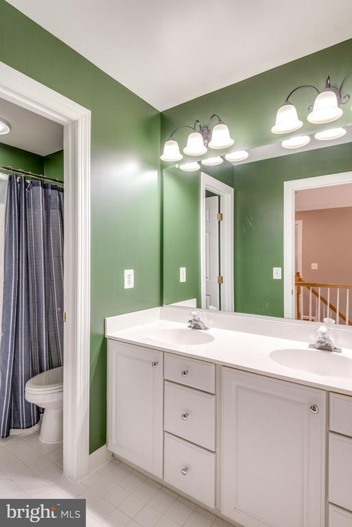 Hall bath - 20894 LAUREL LEAF CT, ASHBURN
