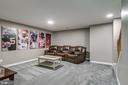 media room - 20894 LAUREL LEAF CT, ASHBURN