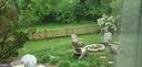 BACK YARD - 20782 LUCINDA CT, ASHBURN