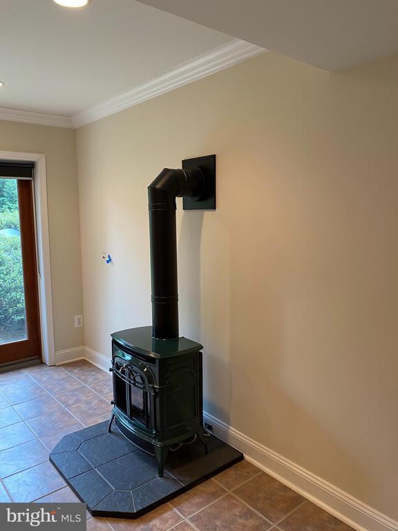 Wood stove in basement! - 21606 GOODWIN CT, BROADLANDS