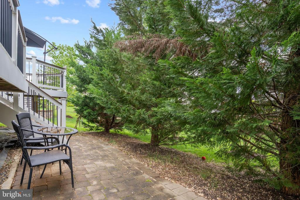 and walks down to the stone patio. - 41959 ZIRCON DR, ALDIE