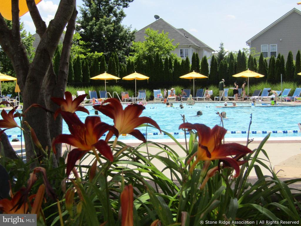 ...includes an aquatic playground and wading pool. - 41959 ZIRCON DR, ALDIE