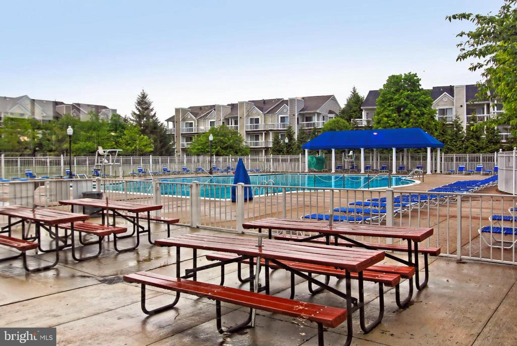Outdoor Pool - 44043 CHOPTANK TER, ASHBURN