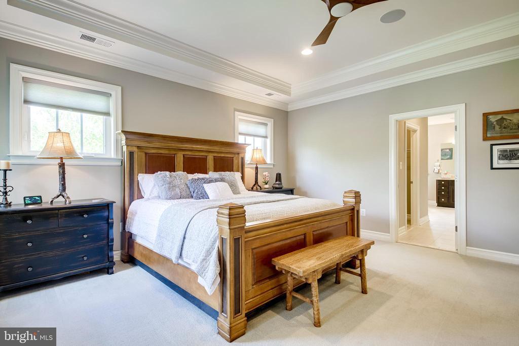 Primary Bed - 41062 LYNDALE WOODS DR, ALDIE