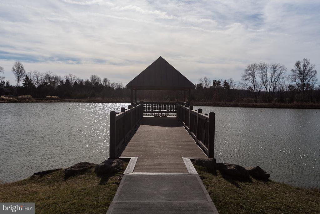 Lake - 41062 LYNDALE WOODS DR, ALDIE