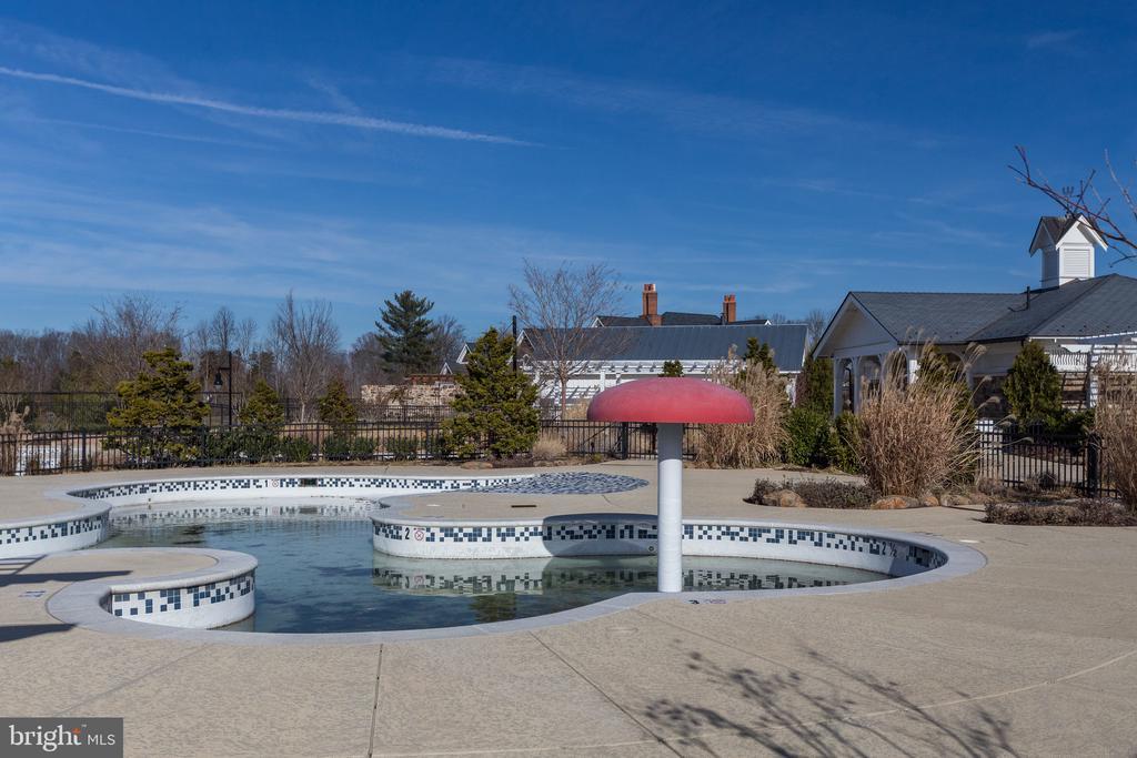 Pool - 41062 LYNDALE WOODS DR, ALDIE