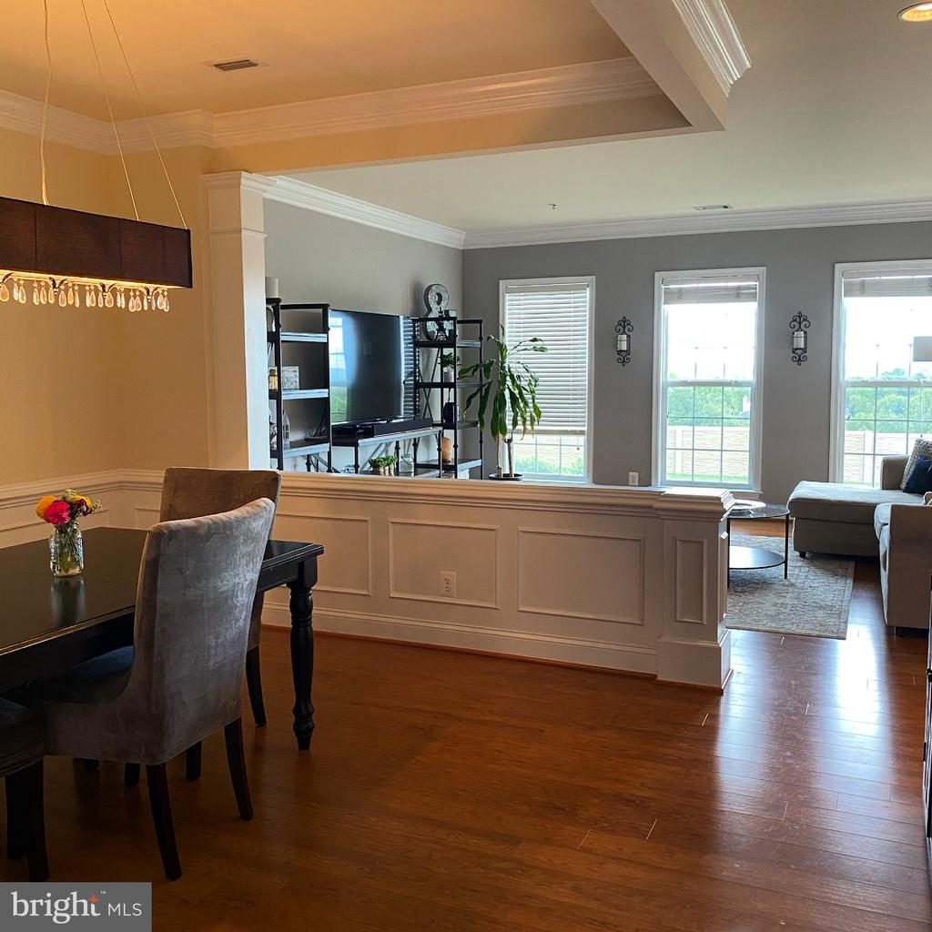 Large social area (living and dining) - 20648 SIBBALD SQ, ASHBURN