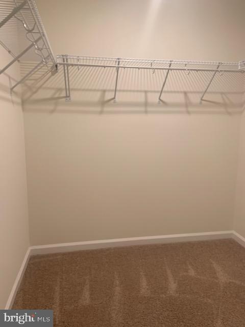 Primary bedroom walk in closet - 42426 DOGWOOD GLEN SQ, STERLING