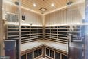 Sauna for relaxing after a workout - 147 STEFANIGA FARMS DR, STAFFORD