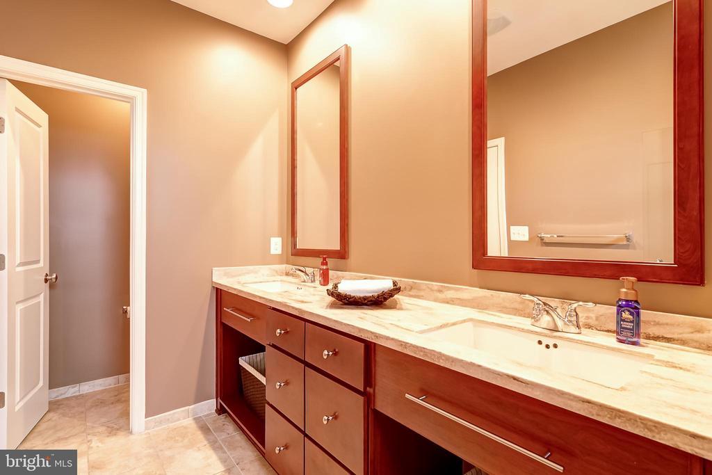 Primary bathroom - 42238 PALLADIAN BLUE TER, BRAMBLETON