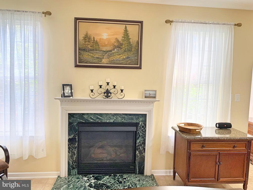 Family Room with a cozy fireplace - 25216 WHIPPOORWILL TER, CHANTILLY