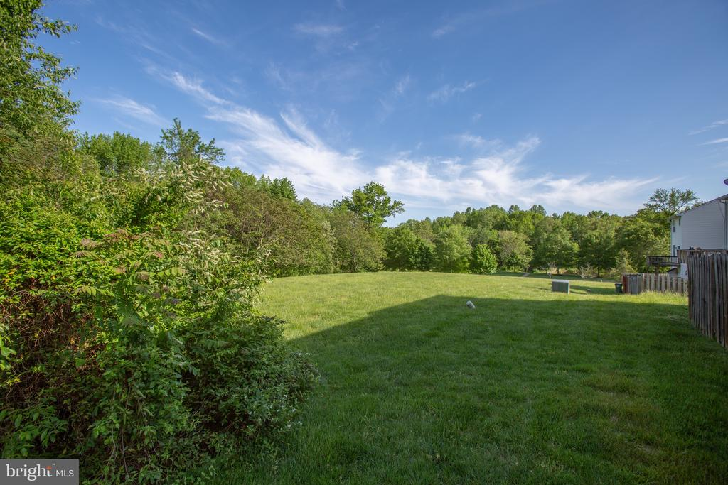 View From Rear of Home - 11317 WYTHEVILLE LN, FREDERICKSBURG