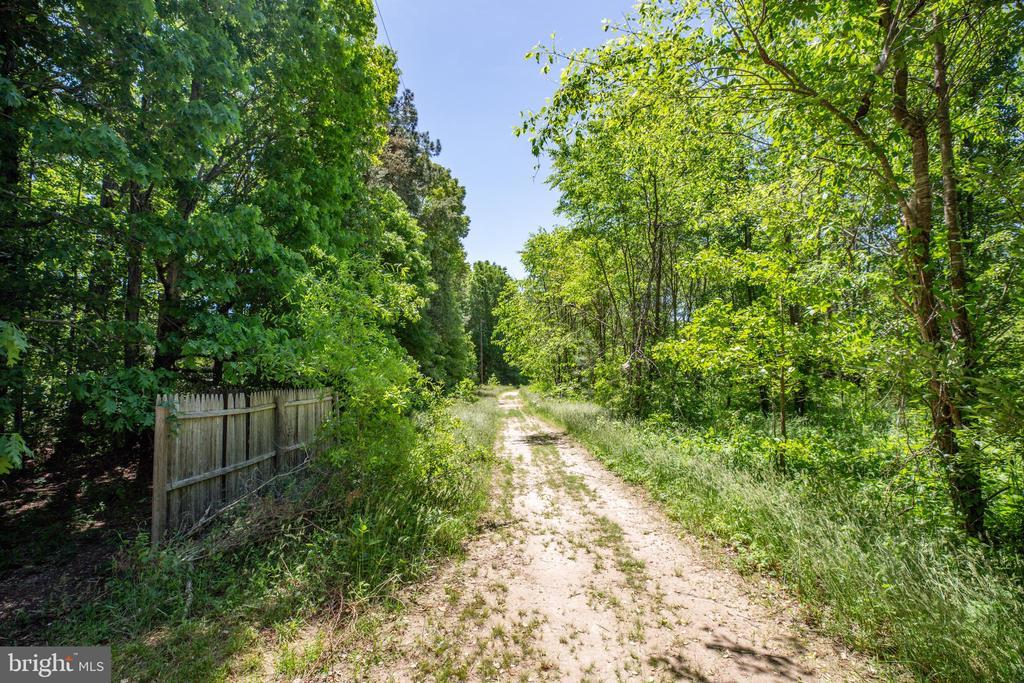 Trail at rear of lot. - 6300 TAVERNEER LN, SPOTSYLVANIA