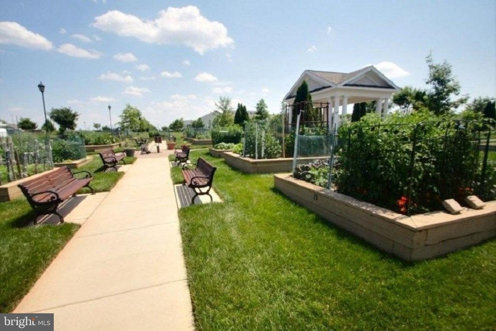 Benches, Walking Paths and Resident Garden Plots - 20580 HOPE SPRING TER #207, ASHBURN
