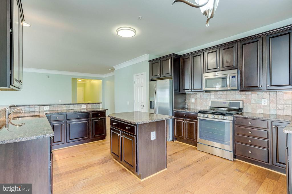 Large Open Kitchen with Island. and Pantry - 20580 HOPE SPRING TER #207, ASHBURN