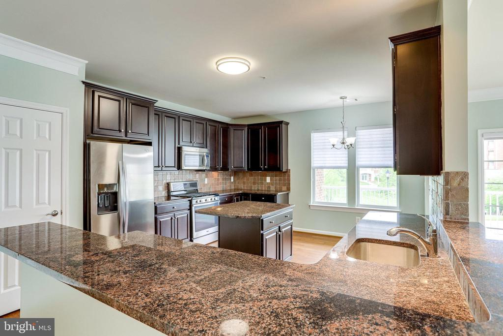 SS Appliances, Granite,  Wood Cabinetry and Pantry - 20580 HOPE SPRING TER #207, ASHBURN