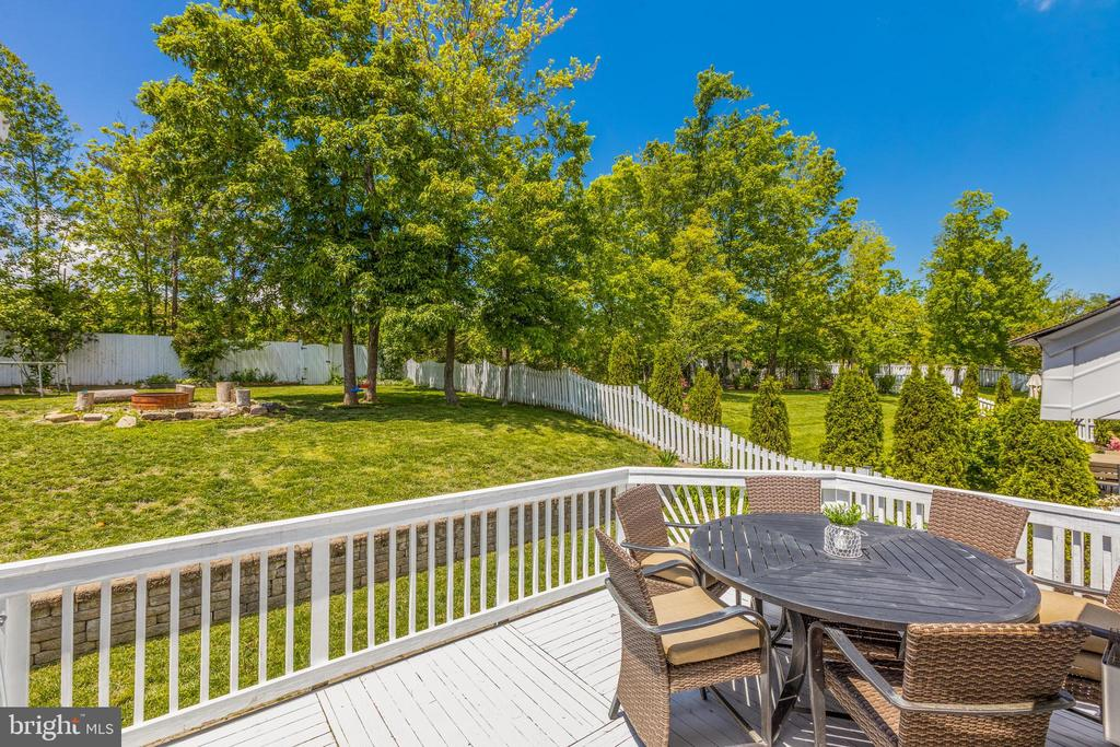 Outdoor Deck great for Grilling - 20443 MIDDLEBURY ST, ASHBURN