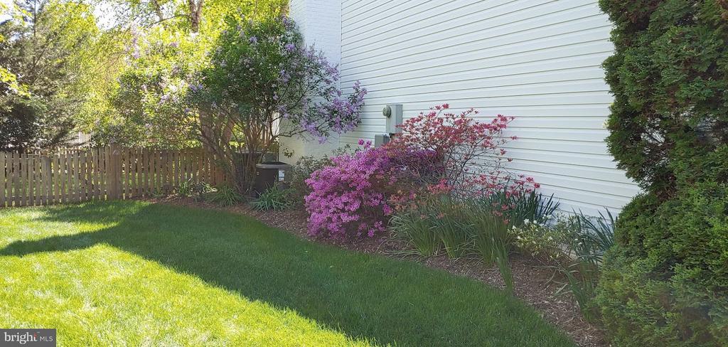 side yard - 20782 LUCINDA CT, ASHBURN